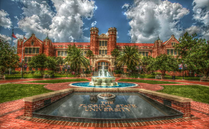 The Ultimate Guide To Fsu Financial Aid Society19